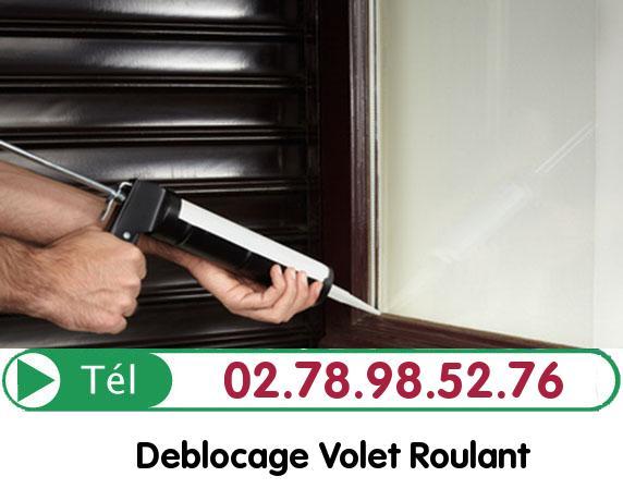 Deblocage Volet Roulant Saint Leger Des Aubees 28700